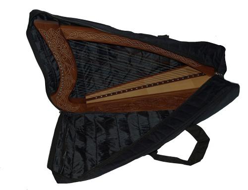 Sinnbild mit unserer 22 saitigen Harfe
